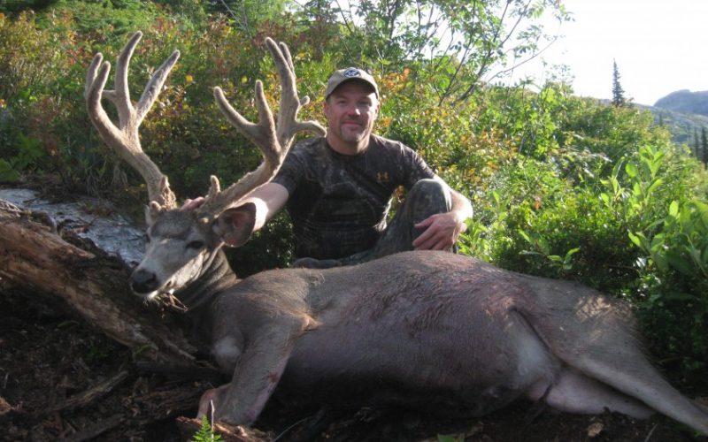 mule-deer-839x629